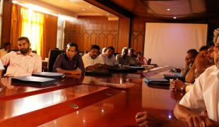 Empowering District Councils to Strengthen Local Governance