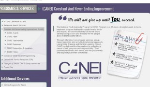 CANEI Project Update