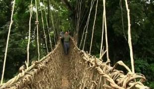 Radio: a bridge connecting communities