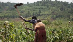 Land Conflict in Burundi