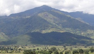 A Day Trip to Morogoro
