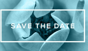 Gala 2015 save the date image