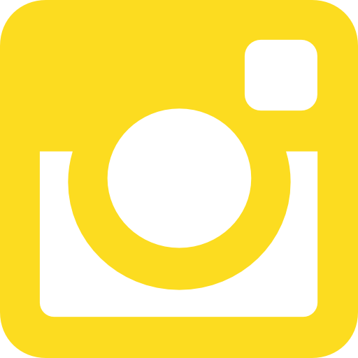Instagram Social Network Logo Of Photo Camera Search For