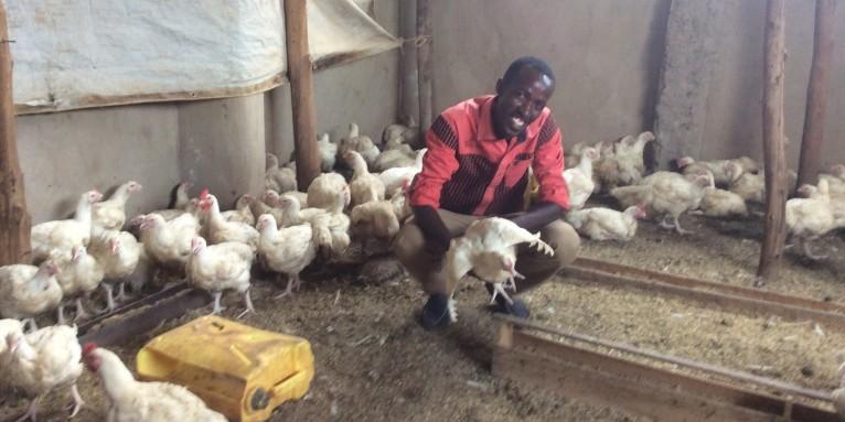 Jean de Dieu Sayingoza in his chicken farm