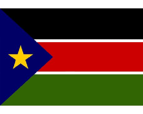 south sudan flag search for common ground