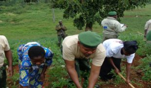 Restoring Relationships Between Security Forces and Civilians in the Eastern DRC